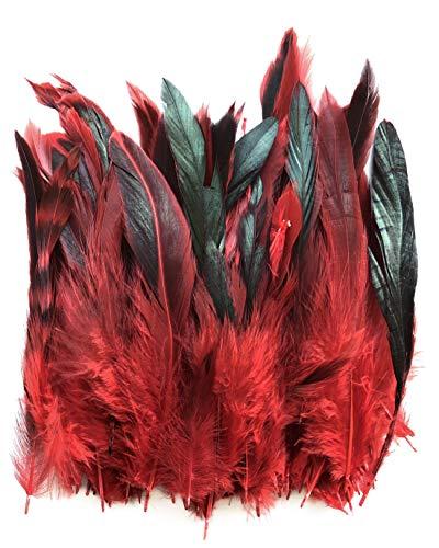 ERGEOB Hahn Feder - Ideen für die Kostüme, Hüte, Home dekor Circa 100 stück 12-18cm rot