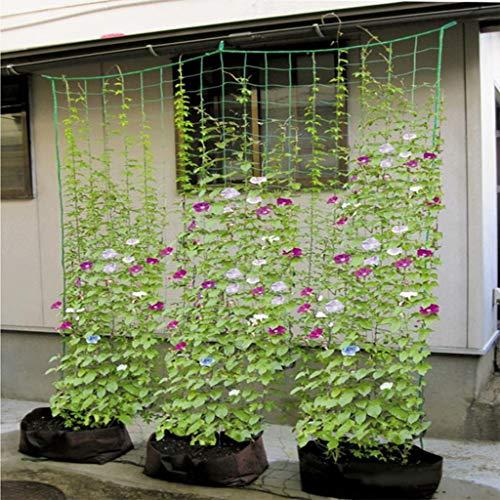 fasloyu Nylonnetz Ranknetz mit großer Maschenweite, Kletternetz Rankhilfe Netz Pflanze Spalier Netz für Gewächshaus Kletterpflanzen Gurken, Himbeeren, Tomaten und andere Gemüsepflanzen Sträucher