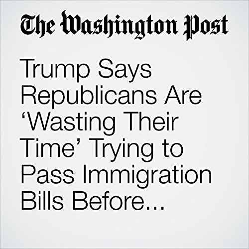Trump Says Republicans Are 'Wasting Their Time' Trying to Pass Immigration Bills Before November Elections copertina