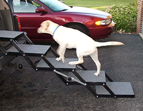 Pet Loader Light 16' Platform, 5-Step