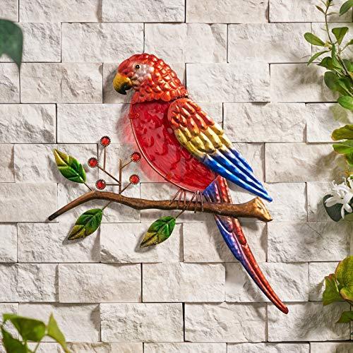 Creekwood Décoration Murale en Verre et métal Motif Perroquet Rouge 36 x 27 cm