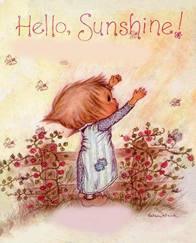hello sunshine: Children\'s Picture Book (English Edition)