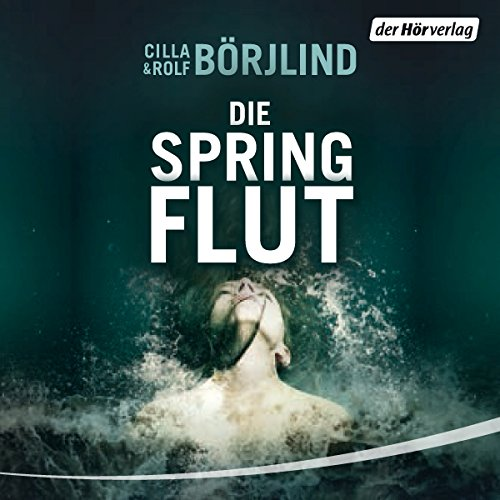 Die Springflut audiobook cover art