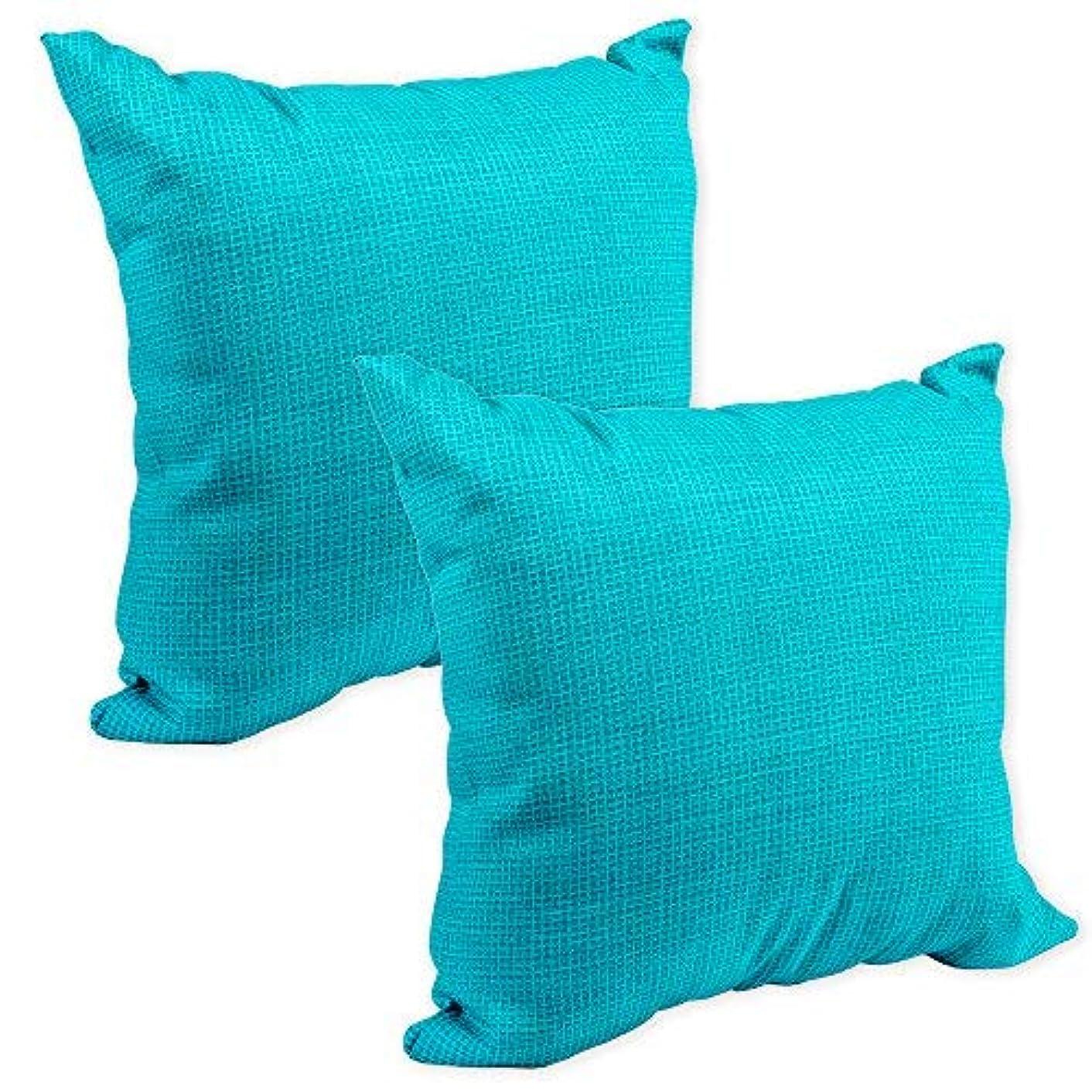 クルーズ始まり十代Aqua Blue Aquarius Tiny Weave Print 16 x 16 Indoor Outdoor Throw Pillow [並行輸入品]