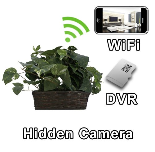 Fake Plant Spy Cams