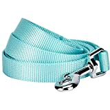 Blueberry Pet Essentials 19 Colors Durable Classic Dog Leash 5 ft x 3/4', Mint Blue, Medium, Basic Nylon Leashes for Dogs