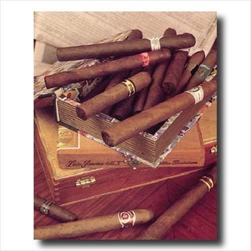 MoonlightMakers Caves à Cigares Étiquettes de cigares Vieilles boîtes à cigares et cigares Mur Magasin Image 16x20 Art Imprimer