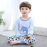 EETYRSD Ropa Interior Traje de los niños de Primavera y otoño algodón niños y niñas de Inicio Servicio de algodón de los niños Ropa de otoño Qiuku (Color : 7, Size : 140#)