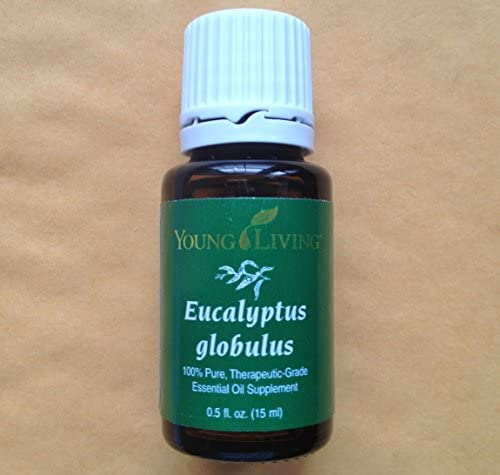 Top 10 Best young living essential oil eucalyptus Reviews