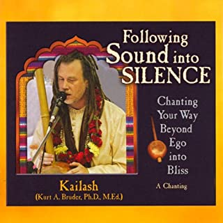 Following Sound into Silence audiobook cover art