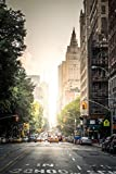 Central Park West New York City Photo Photograph Cool Wall Decor Art Print Poster 24x36