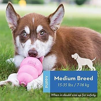 KONG - Puppy Caoutchouc Naturel Premières Dents - Jouet à Mâcher, Chasser et Rapporter (Coloris Variable) - pour Chiot Taille Moyenne