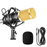 Neewer NW-800 Microphone Enregistrement Studio Radio Kit Inclus (1) Microphone à Condensateur Professionel Noir + (1) Support de Microphone Antichoc + (1) Bouchon Anti-Vent en Mousse + (1) Câble d'Alimentation