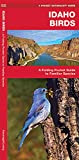 Idaho Birds: A Folding Pocket Guide to Familiar Species (Wildlife and Nature Identification)