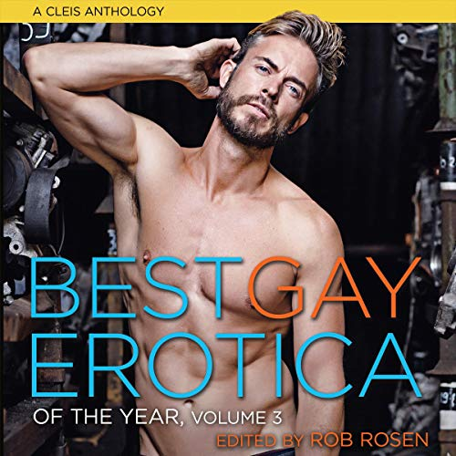 Best Gay Erotica of the Year, Volume 3 Titelbild
