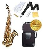 Birdland soprano saxophone B flat (Bb), lightweight soprano sax, Gold lacquer Saxophone Soprano with Carrying Case, Mouthpiece, Ligature, Cap, Strap,...