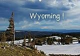 Wyoming! (Wandkalender 2020 DIN A2 quer): Eine Reise durch Wyoming, Land der Cowboys (Monatskalender, 14 Seiten )