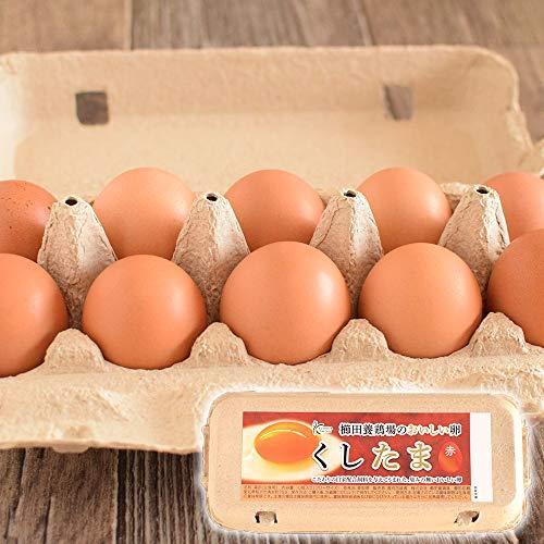 【普段使いにおススメ】櫛田養鶏場のおいしい赤卵【30個入り(27個+3個破卵保障)】餌にこだわった超新鮮た...