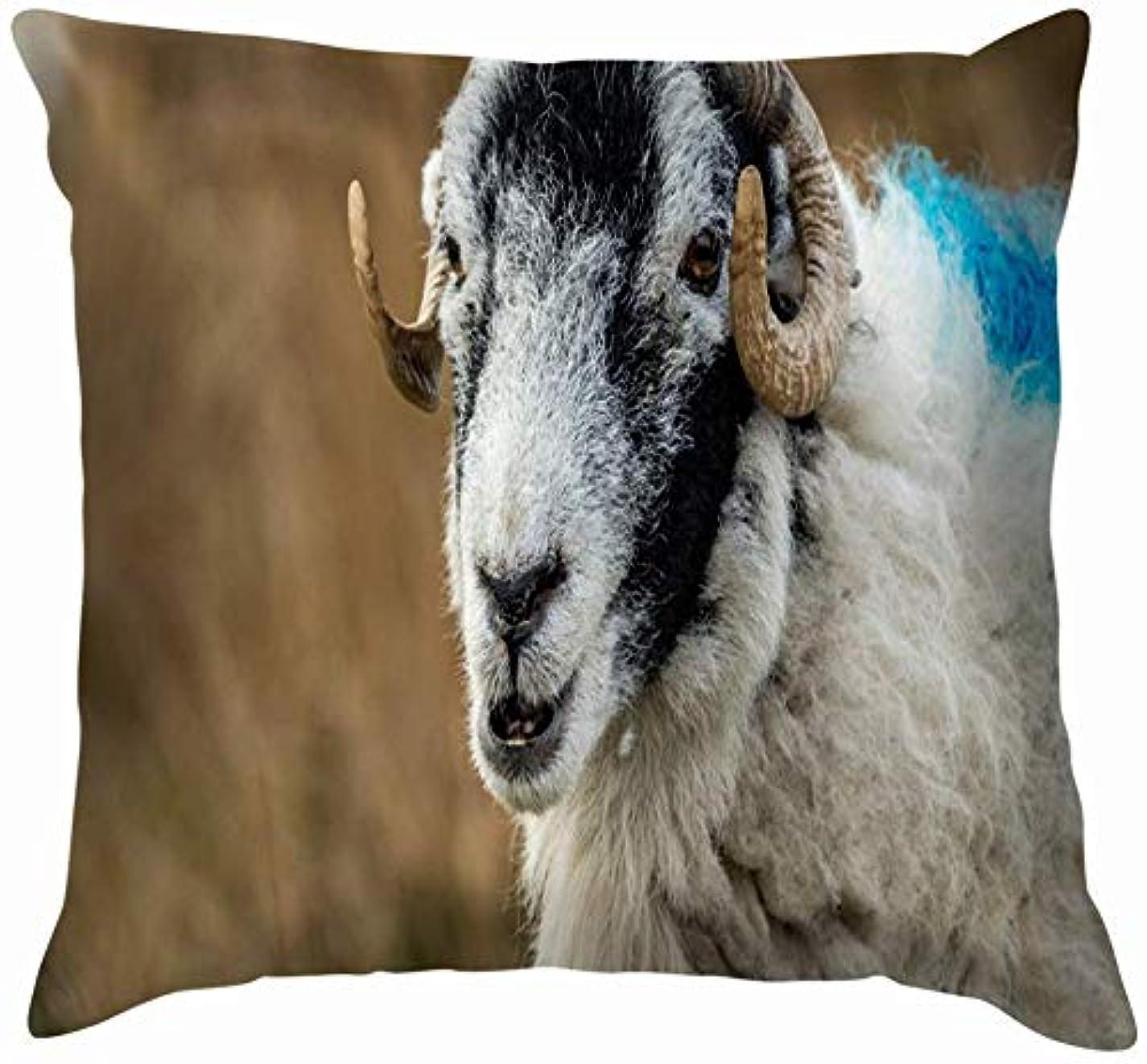 怠な分離保守的Swaledale Sheep Winter Ewe雌動物野生動物農業公園屋外投球枕カバーホームソファクッションカバー枕カバーギフト45x45 cm