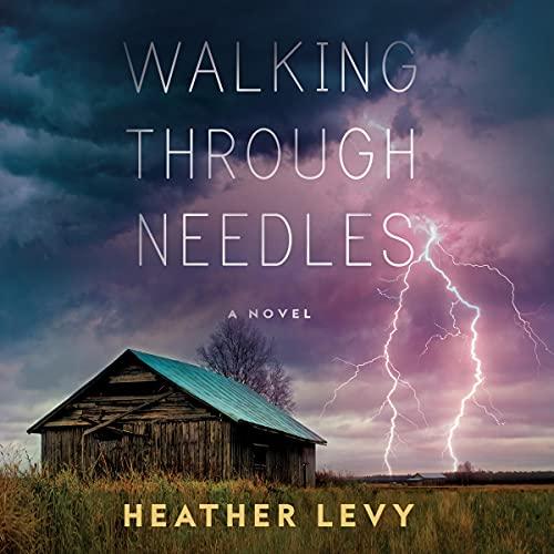 Walking-Through-Needles