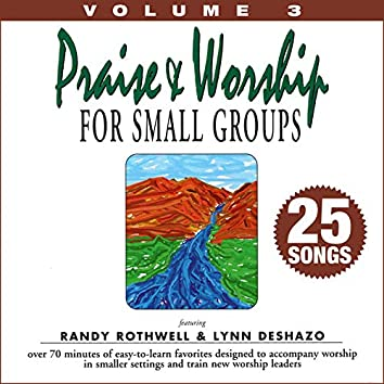 Praise & Worship for Small Groups, Vol. 3 (Whole Hearted Worship)