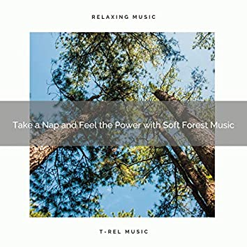 2021 New: Take a Nap and Feel the Power with Soft Forest Music