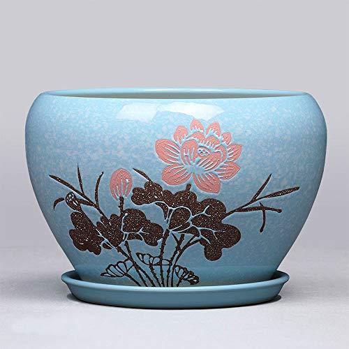 Las macetas, las cerámicas y las bandejas están diseñadas para crear una casa redonda de orquídeas con un simple eneldo verde