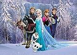 1art1 Die Eiskönigin - Charaktere, Olaf, Sven, Anna, Kristoff, ELSA, Hans Fototapete Poster-Tapete 160 x 115 cm