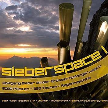 sieberspace I