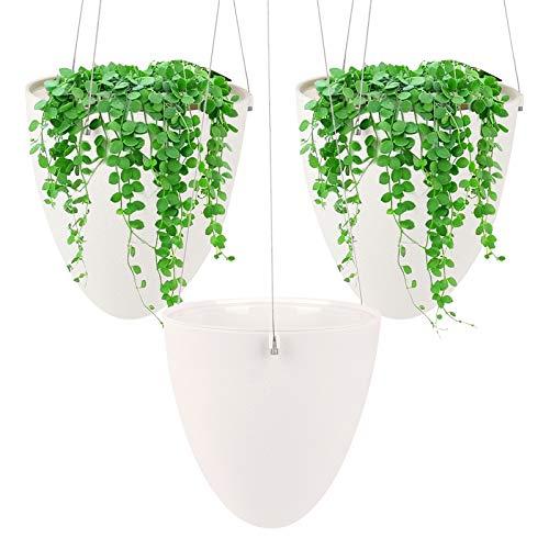 Ulikey 3Pcs Colgante de Plantas Macetas para Plantas Colgantes, Maceta de Colgante de Plástico,...