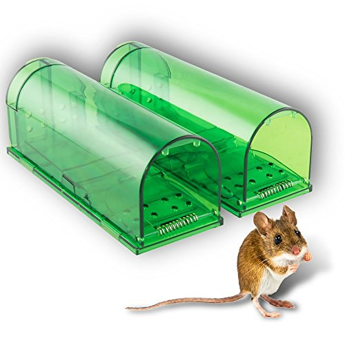 HoneyBull Humane Mouse Trap [2 Pack] No-Kill, Pet & Children Safe