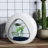 Aquarium Kit 1 Gallon, Betta Small Fish Tank with LED Light & Power Filter, White