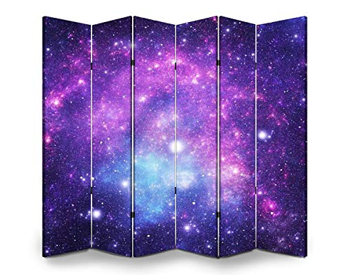APED DECOR Wood Screen Room Divider Constellatio Microscopium Mic Folding Screen Canvas Privacy Partition Panels Dual-Sided Wall Divider Indoor Display Shelves 6 Panels