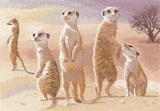 Meerkats - 14 count Aida - Cross Stitch Kit