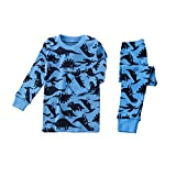 Apples & Pajamas Kids, Girls, Boys, Unisex 100% Cotton 2-Piece PJ Set (10-11, Hear Me Roar)