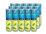 BRIDGESTONE(ブリヂストン) プレッシャーライズド テニスボール TOUR PRO(ツアープロ)4球入 1箱(15缶/60球)