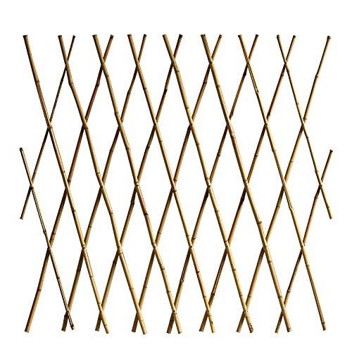 SLQ Fuera de la Valla de bambú, bambú, caña de bambú, Corral, jardín, jardín.