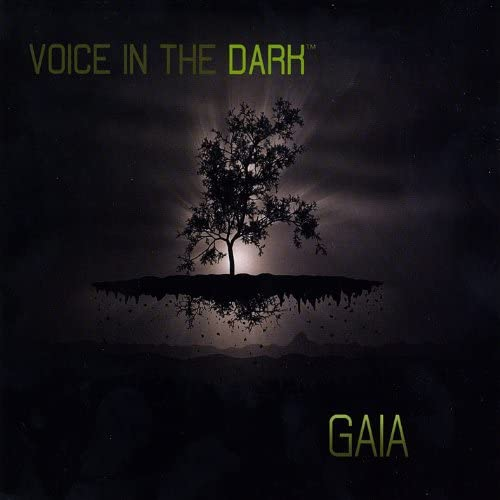 Voice in the Dark