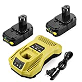 Energup 2Pack P102 Replacement Ryobi Battery 18V Lithium + Ryobi Charger for Ryobi 18v Lithium Battery 18V ONE + P108 P107 P104 P105 P102 P103 Tools Charger with 260051002 P117 P118 P113 BCL1418