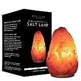 Evolution Salt - Natural Crystal Himalayan Salt Lamp 4-6 lbs
