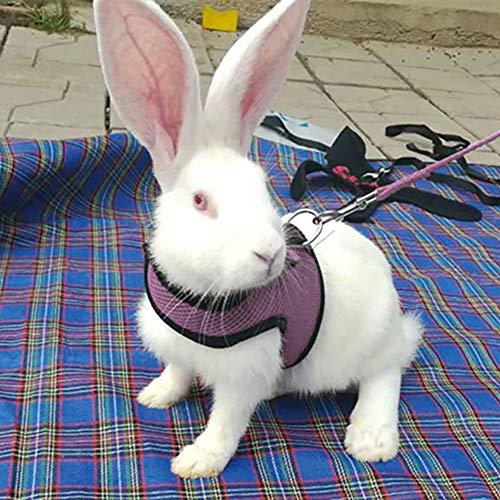 Urijk Kaninchen Meerschweinchen Hamster Mesh Leine Kleine Haustier Leine Kleid Geschirr Verstellbar Wandern Sicherheit Geschirr Dekoration