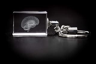 Human Brain 3D Laser Crystal Key Chain, Anatomy, Mind Neurology Thinking