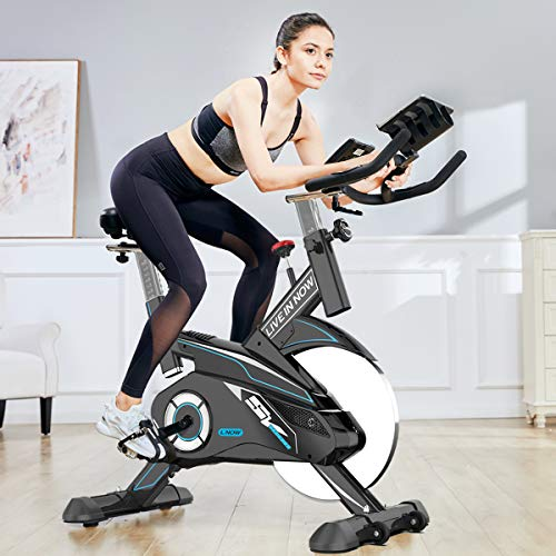 L NOW Indoor Exercise Bike Indoor Cycling Stationary Bike Belt Drive Smooth and Quiet (Black-Blue)