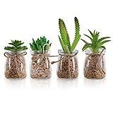 Plantas Artificiales Mini Macetas (Pack de 4) - Planta Artificial Decorativa en Jarrón Transparente – Plantas Verde Cactus para Sala de Estar, Librero, Escritorio de Oficina, Decoración Interiores