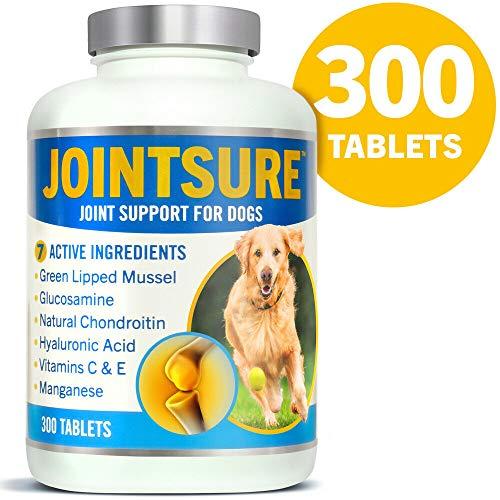 JOINTSURE für Hunde 300 Tabletten | Grünlippmuschel, Glucosamin & Chondroitin zur Gelenkpflege bei Hunden. Unterstützt die Gelenkstruktur und erhält die Mobilität.