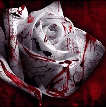 white blood rose