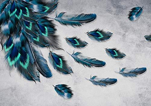 wandmotiv24 Fototapete Pfau Feder Muster, XXL 400 x 280 cm - 8 Teile, Fototapeten, Wandbild, Motivtapeten, Vlies-Tapeten, Vogel, Tiere, Natur M1107