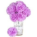 BalsaCircle 36 Lavender Silk Extra Large Carnations Flowers - 4 Bushes Artificial Flowers Wedding Party Centerpieces Arrangements Supplies