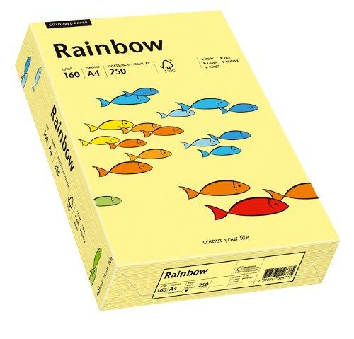 Papyrus 88042305 Drucker-/Kopierpapier farbig, Bastelpapier Rainbow: 160 g/m², A4 250 Blatt Buntpapier, hellgelb
