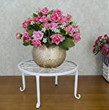 LQQGXL Iron flower stand single pot flower pot balcony green flower pot rack Flower stand ( Color : White )